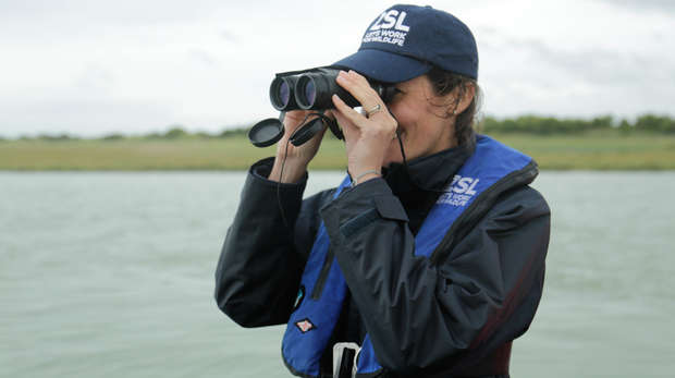 A female conservationist uses a pair of binoculars to look for wildlife on the Thames.