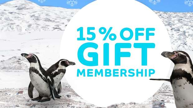 15% off ZSL Gift Membership