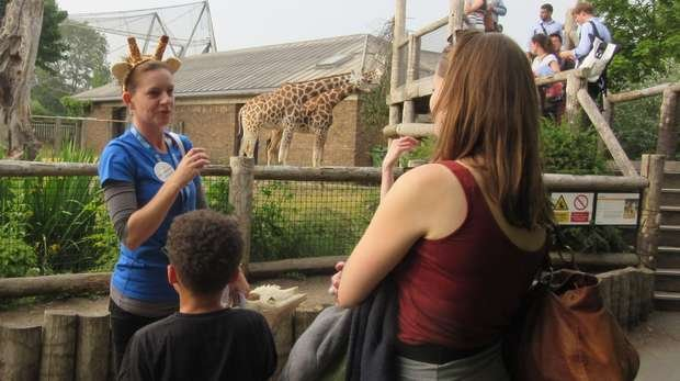 A ZSL conservationist explains her work with giraffes to visitors at ZSL London Zoo.