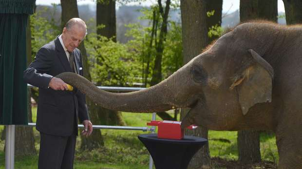 HRH Duke of Edinburgh hsaking trunks with an elephant