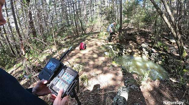 Photo - Conservationists in a forest setting up camera traps