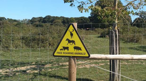 'Free Roaming Animals' sign at Knepp Estate, West Sussex © Henrike Schulte to Buhne