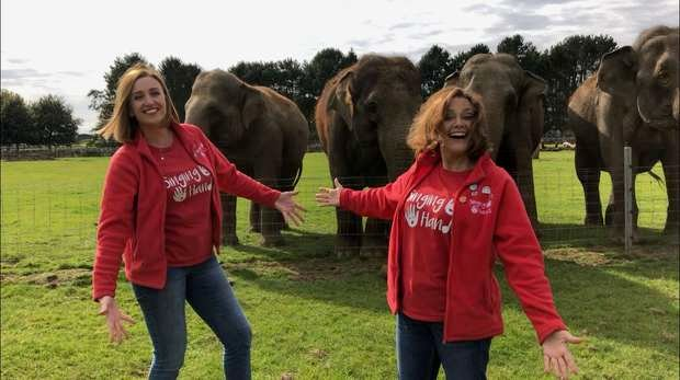 Singing Hands and Elephants at ZSL Whipsnade Zoo