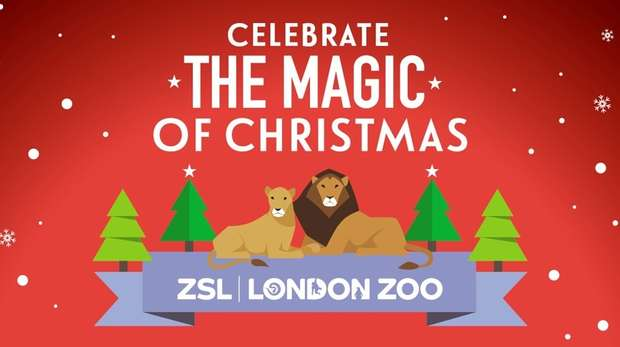 Magic of Christmas at ZSL London Zoo