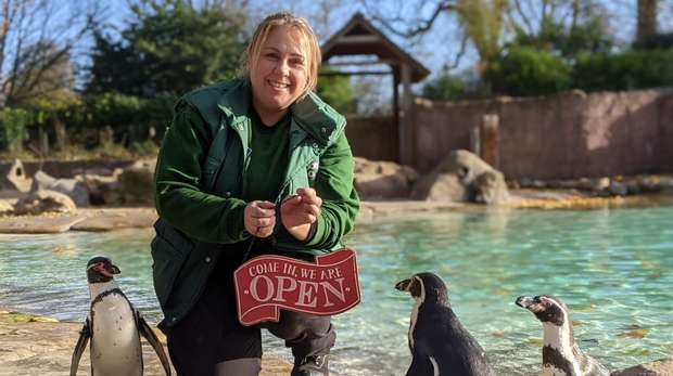 Penguin keeper Zuzana Boumrah celebrates London Zoo's reopening on 2 December