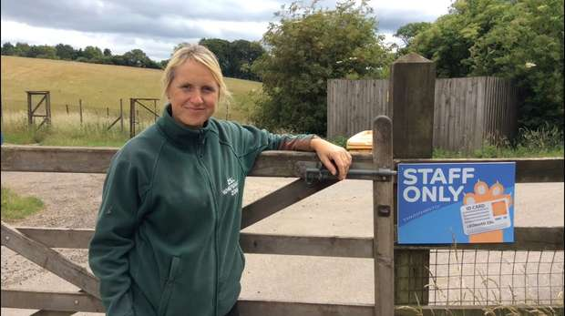 ZSL's online outreach - learning officer danielle hearn - day in the life