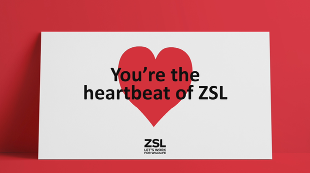 Our members are the heartbeat of ZSL