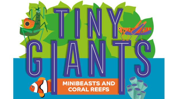 Logo for Tiny Giants exhibit at ZSL London Zoo