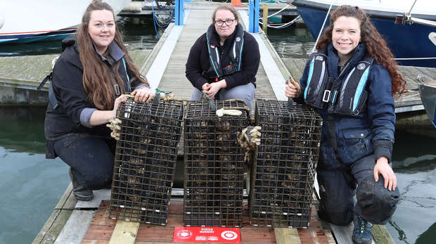 three conservationists with oyster cages