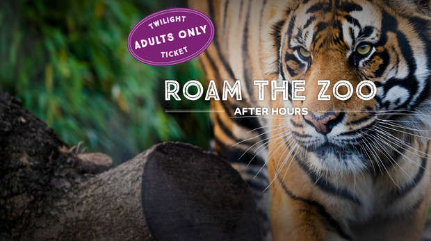 Roam the Zoo after hours with our Twilight opening this July