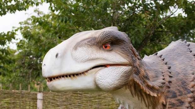 A utahraptor in Zoorassic Park at ZSL Whipsnade Zoo