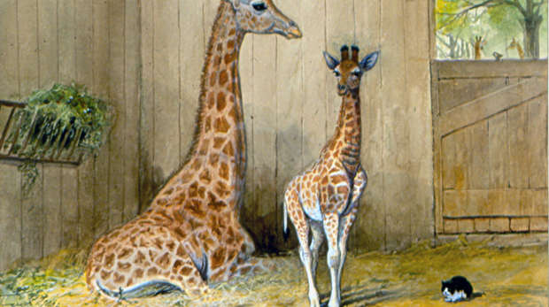 A painting of a giraffe with young and the `giraffe house cat'