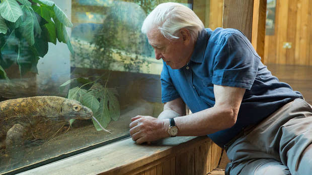 Sir David Attenborough with Komodo dragon