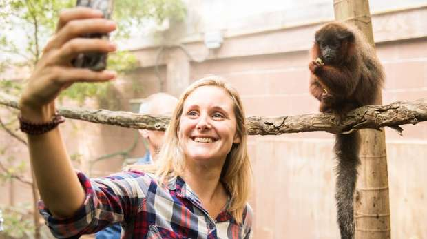 Meet the Rainforest at ZSL London Zoo
