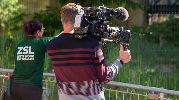 Camera filming at London Zoo with Zookeepers