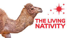 Living nativity promo