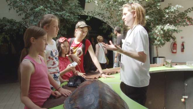 Learning Volunteer at ZSL London Zoo