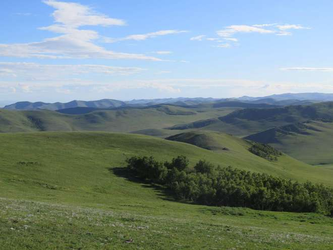 View of Hustai National Park Hills