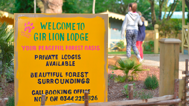 Gir Lion Lodge at ZSL London Zoo