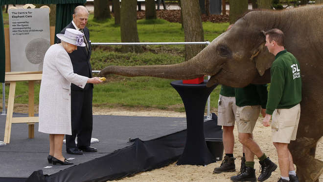 HM The Queen opens ZSL Whipsnade Zoo's Centre for Elephant Care