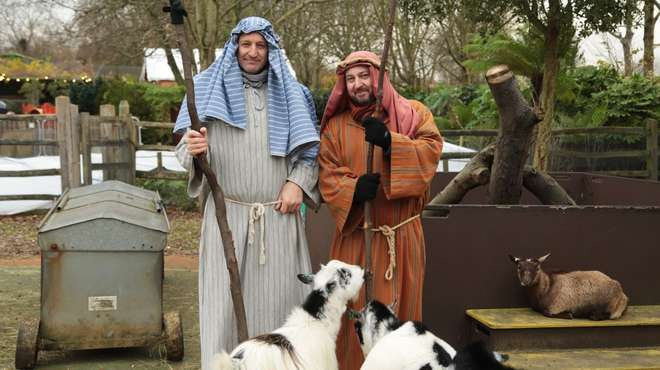 Living Nativity at ZSL London Zoo