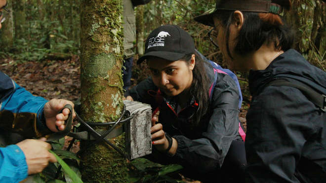 Photograph of EDGE Fellows attaching a camera-trap to a tree