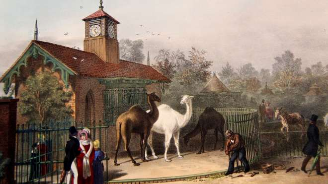 Clock Tower / Llama & Camel House - 1828 by Decimus Burton, Listed Grade II