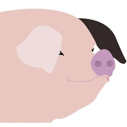 Marge the pig icon