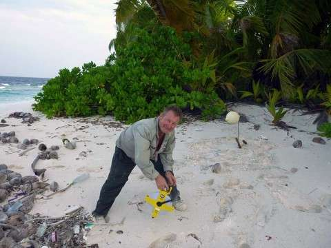 rat eradication; preparation; coconut crab; Chagos