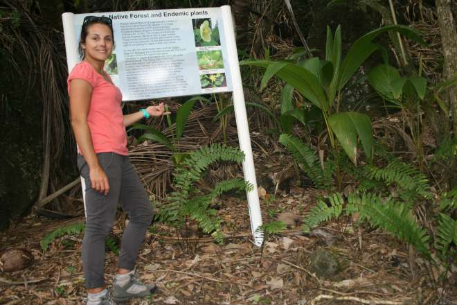 Ana looking for endemic plants on Pitcairn