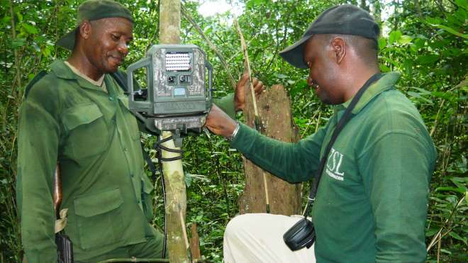 Setting up a camera trap in Virunga National Park