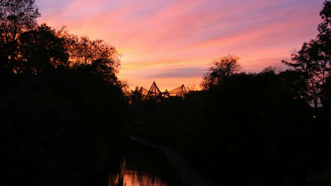 Sunset at ZSL London Zoo