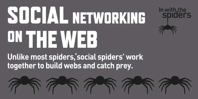 In With The Spiders infographic - social networking