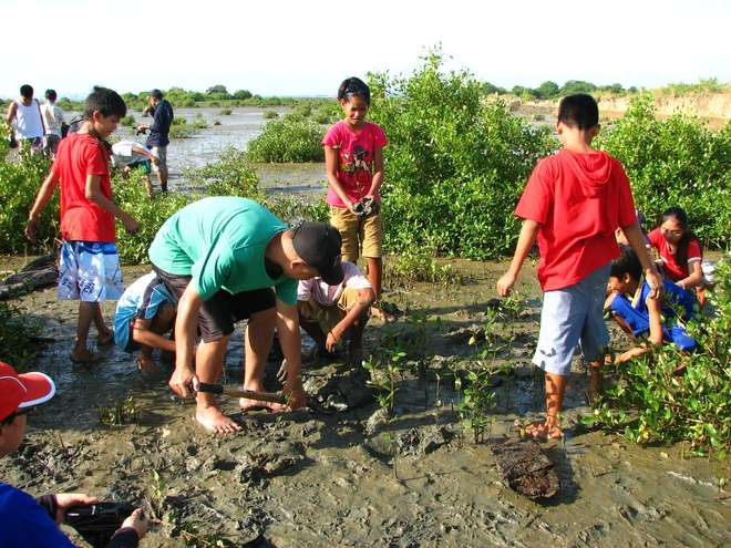 Mangrove outplanting activity with students in Nabitasan, Leganes