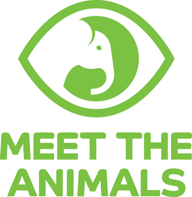 Meet The Animals Elephant Logo