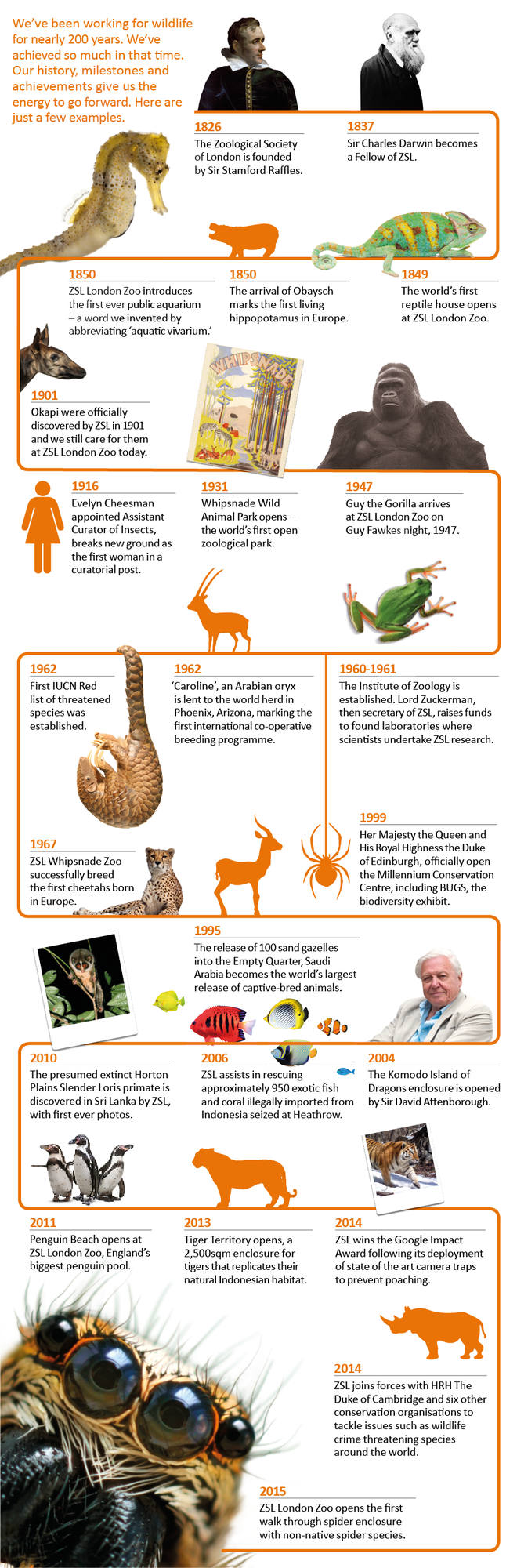An infographic of the history of the Zoological Society of London.