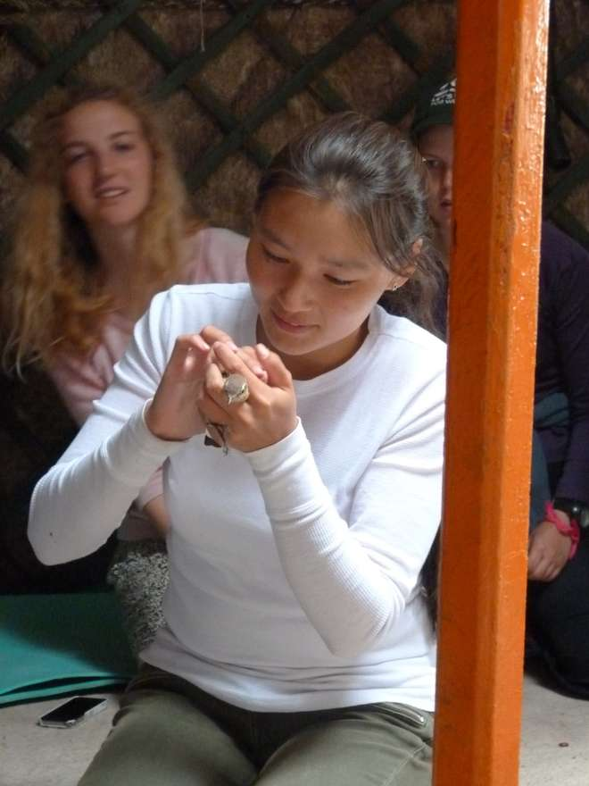 Student handling a bird on ZSL summer Field Course