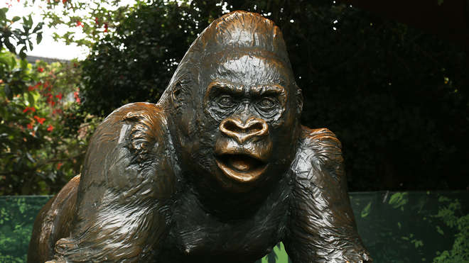 Statue of Guy the gorilla