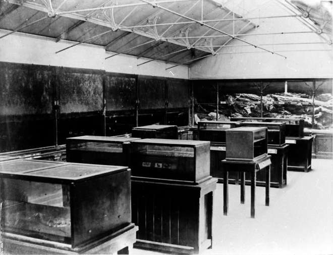 Inside the Fish House, circa 1875 with rows of individual tanks