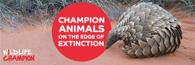 Wildlife Champions - Champion Animals on the Edge of Extinction