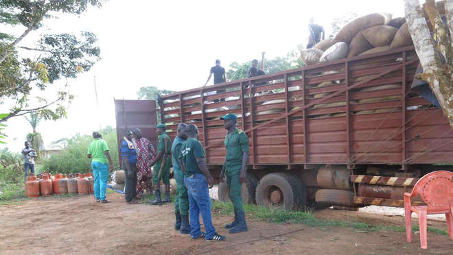 Cocoa truck hiding ivory tusks in Djoum, Cameroon