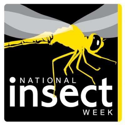 National Insect Week 2016 logo