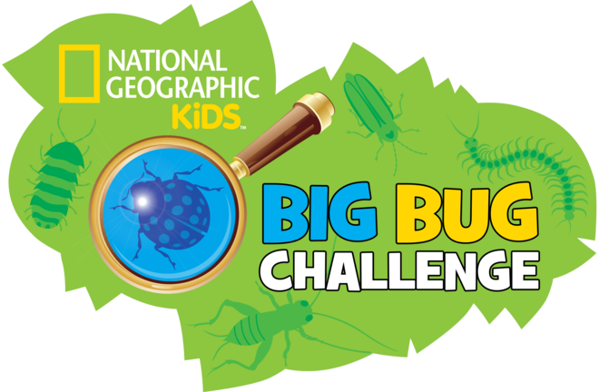 National Geographic Kids Big Bug Challenge logo