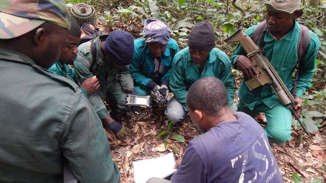 ZSL leading the Cameroon team on patrol