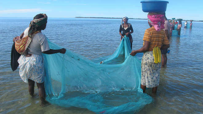 Women fishing using malaria nets on the Kenyan coast