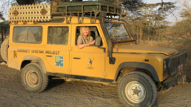 Dr. Sarah Durant, the lead author of the cheetah study, in a cheetah conservation truck in Tanzania