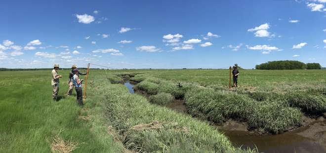 Using a lightweight tower system to deploy Compact Biomass Lidar2 (CBL2) at saltmarsh creeks, Plum Island (MA)