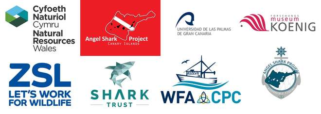 Angelsharks in Wales - logos of partners