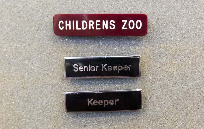 Staff section badges. They read 'children's zoo', 'keeper' and 'senior keeper'