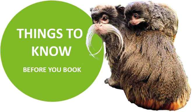 Know Before You Book Meet the Monkeys